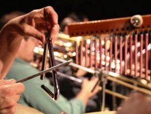 Ivan Vilela e Orquestra abrem jornada de Educação Musical da UFSCar