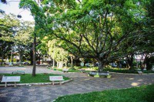 Economia Solidária: Domingo tem Festa Julina na Praça da XV